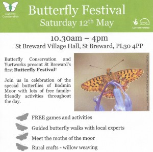 Butterfly Festival poster