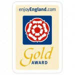 EE Gold Award Square