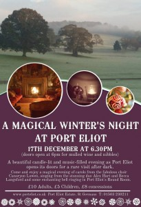 Port Eliot Night Poster