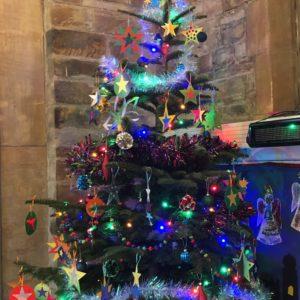 TC Methodist tree 1