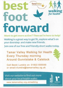 Tamar Valley Walking For Health