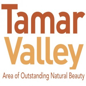 Tamar Valley logo