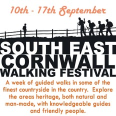 Walking Fest poster