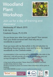 Woodland Plant Workshop